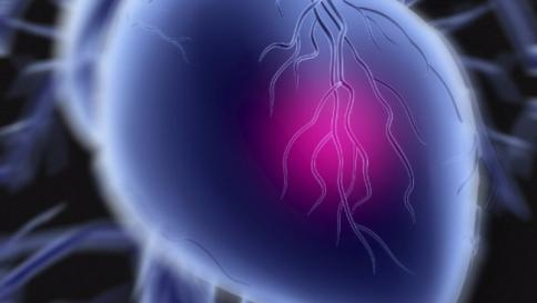 In aumento le persone colpite da infarto improvviso e sempre più giovani