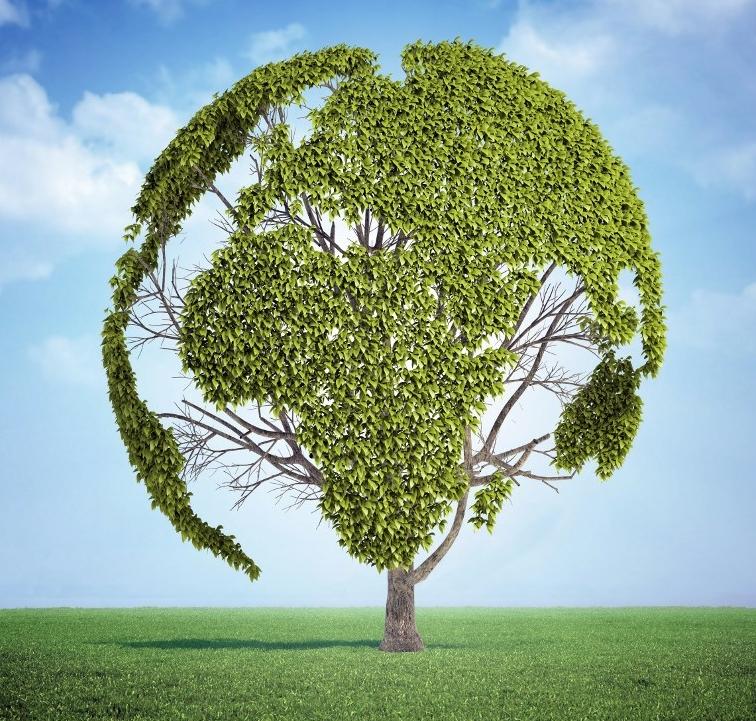 Giornata mondiale della TerraSalvare il Pianeta è possibile