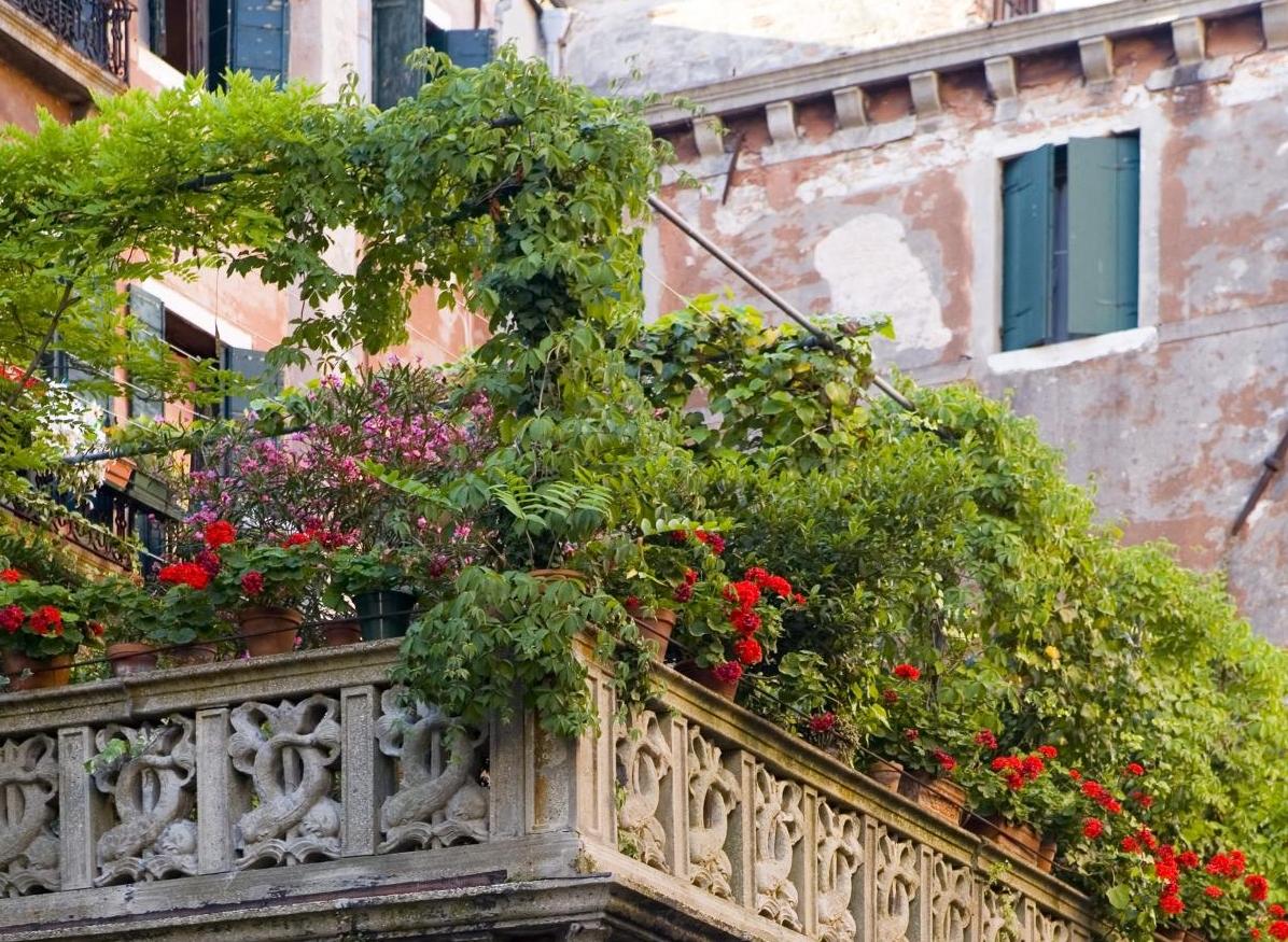 Bari, il verde germoglierà su duemila metri quadri di tetti
