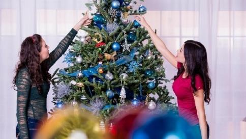 Albero Di Natale Petrolio.California L Albero Di Natale Si Adotta Tgcom24