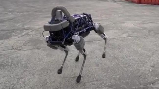 Arriva spot il cane robot di google gli manca solo la coda per