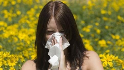 Esplode la stagione dei pollini: sei milioni gli italiani allergici