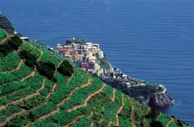 Liguria: trekking tra uliveti e vigneti - Tgcom24 - Foto 2