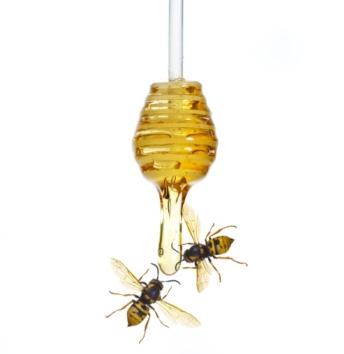 Un fiore autunnale può cambiare il destino delle api