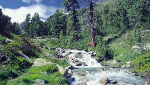 Fiumi alpini a rischio il 90 dei corsi deviato o - Portano acqua ai fiumi ...