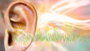 Giornata mondiale dell'udito, sei consigli per proteggerlo