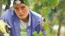 Pazzi per l'agricoltura: fattorie young
