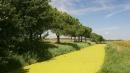Aria più pulita in Pianura Padana, <br>le polveri sottili sono in calo
