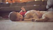 Bimbi meno stressati se crescono con un cucciolo