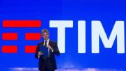 Logo Telecom va in pensione, arriva nuovo brand unico: la...