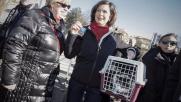 Roma, alla benedizione degli animali Boldrini con il gatto