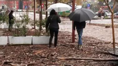 Il maltempo miete 5 vittimeCade albero, ferito bimbo