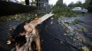 """Maltempo, la tempesta """"San Giuda"""" sull'Europa: 11 morti e 300mila al buio"""