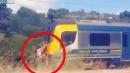 """Nuova Zelanda, il """"surf"""" si fa in coda al treno: giovani ricercati dalla polizia"""