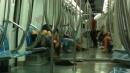 Roma, fanno sesso sul metro B<br>La foto fa il giro del Web