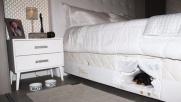 Dal Brasile il materasso con una cuccia-letto per il cane