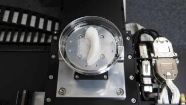 Stampati in 3D i primi 'pezzi di ricambio' per corpo umano
