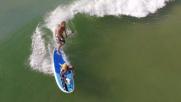 Australia, cani sul surf per imparare a obbedire