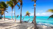 Paradisi tropicali: un'oasi di sole e relax