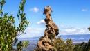 Monti del Nuorese: incontro con  Sa Crabarissa