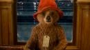 """""""Paddington"""", Francesco Mandelli è la voce dell'orsetto combinaguai"""