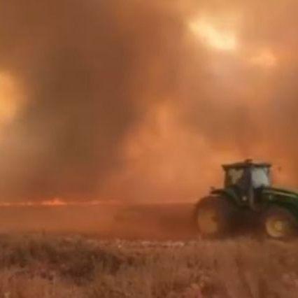 Brasile, foresta pluviale amazzonica registra incendi record quest'anno