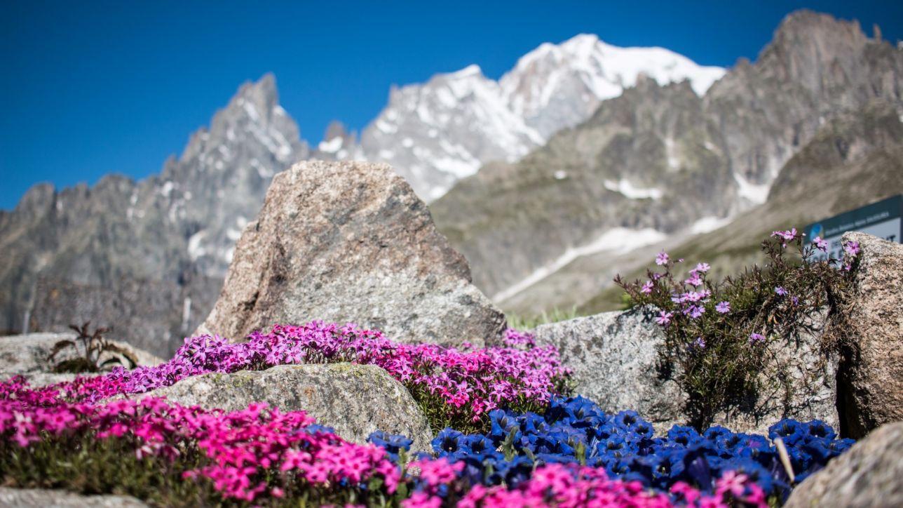 Courmayeur, la bella estate tra sport, cibo e natura