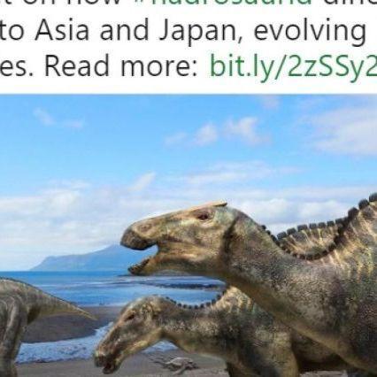 Japón descubre una nueva especie de dinosaurio que vivió hace 72 millones de años