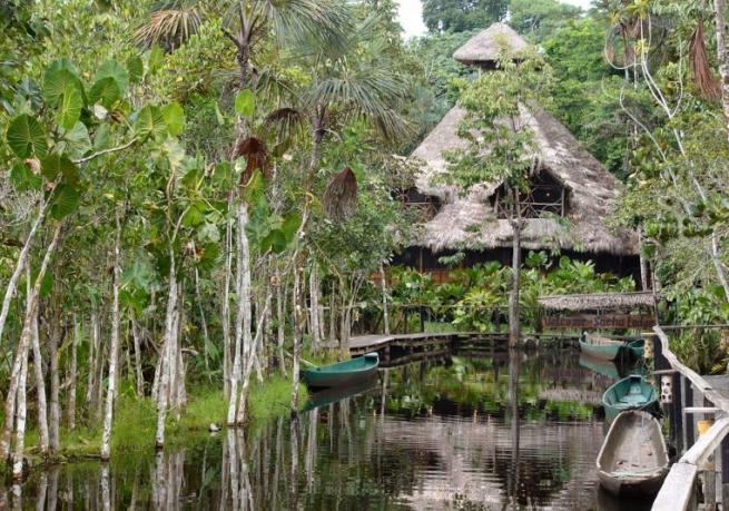 Ecuador: nella Foresta Amazzonica un vero paradiso