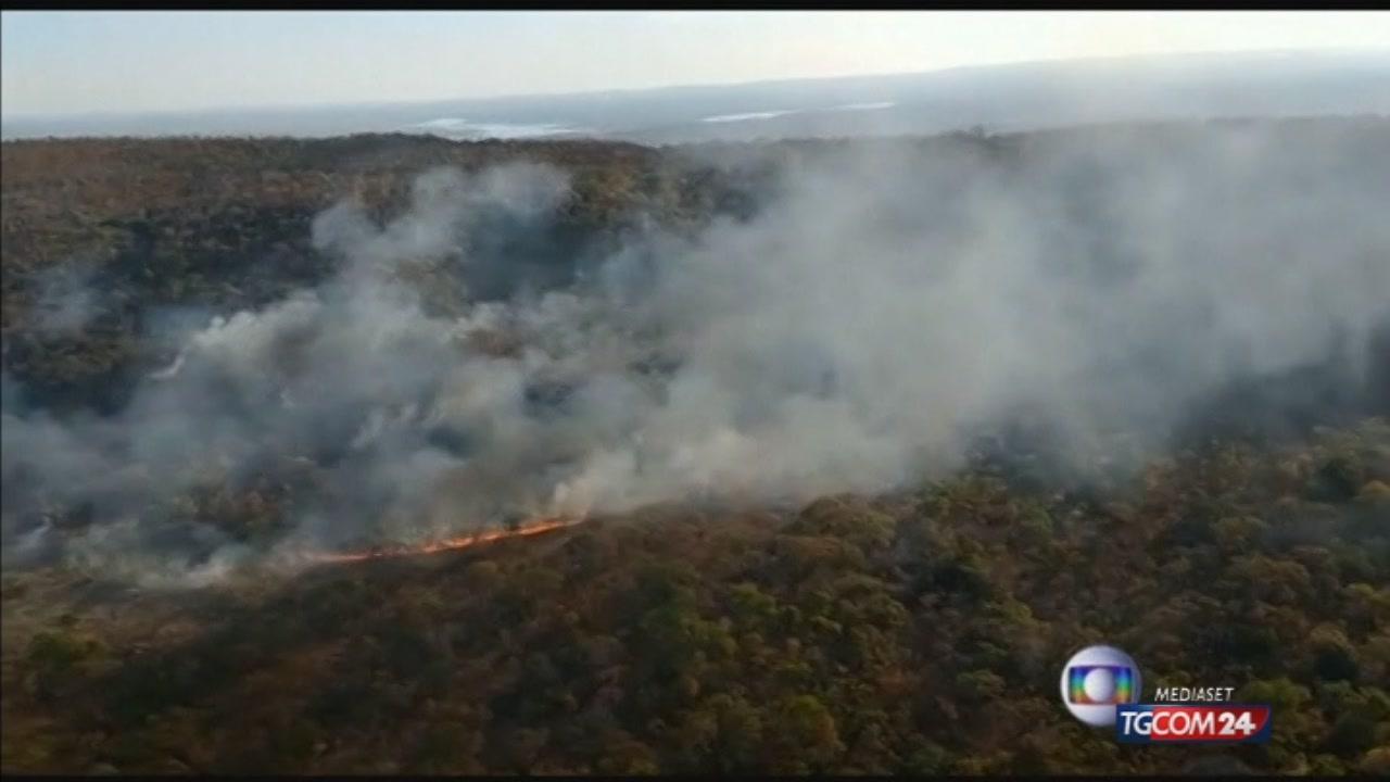 L'Amazzonia brucia