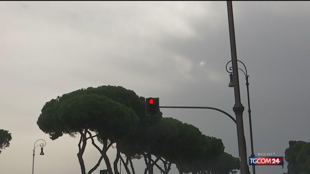 Maltempo, a Roma è polemica per la mancata manutenzione degli alberi